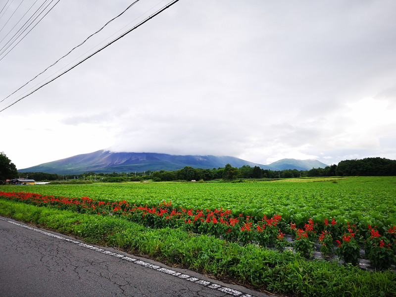 浅間山は雲の中だが、確かな存在感がある。